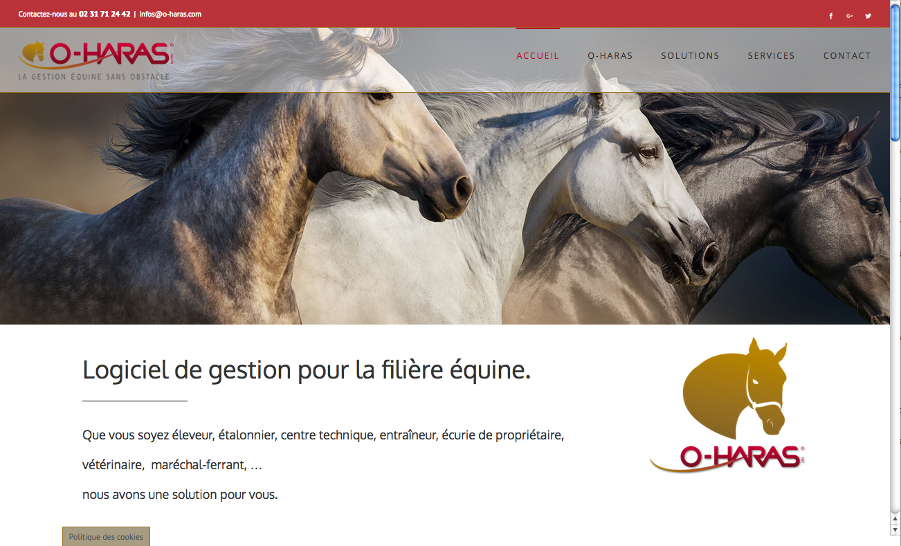 site O-Haras.com