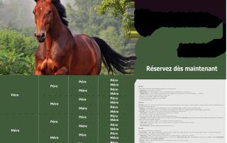 Exemple de fiche étalon sur le site internet